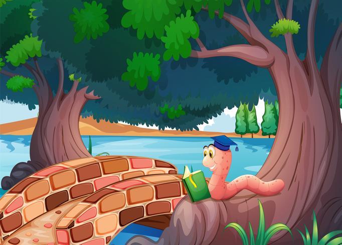 Een worm die een boek leest boven de wortels van een boom