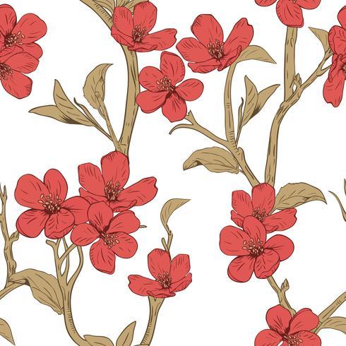 Árbol floreciente Patrón sin fisuras con las flores. Textura floral de primavera. Dibujado a mano ilustración vectorial botánica vector