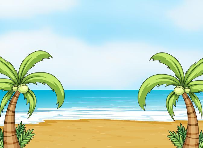 un océano y una playa
