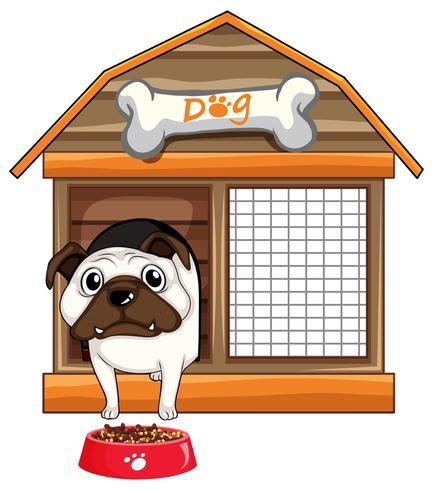 Pug hund i hund hus