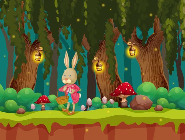 Un lindo conejo en el bosque