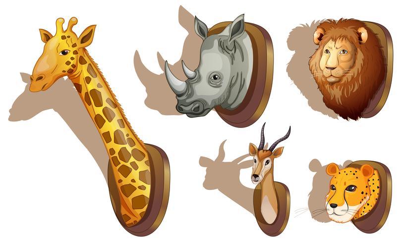 Fyllda djurhuvud