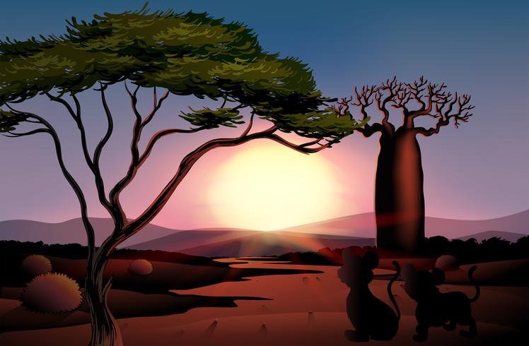 Een zonsondergang in de woestijn met dieren