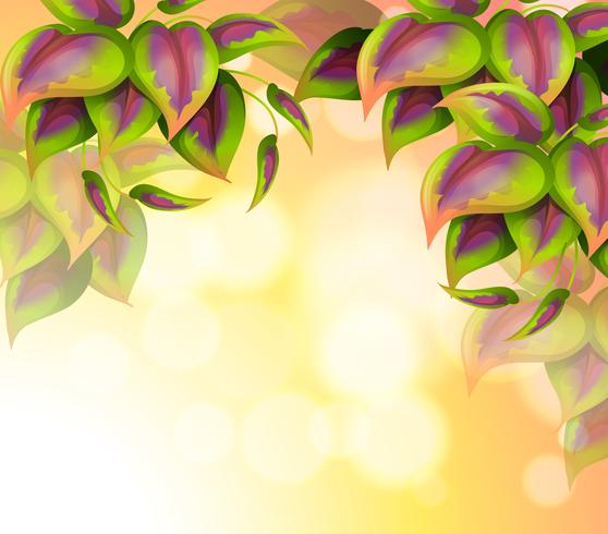 Un papier spécial avec des feuilles en forme de coeur