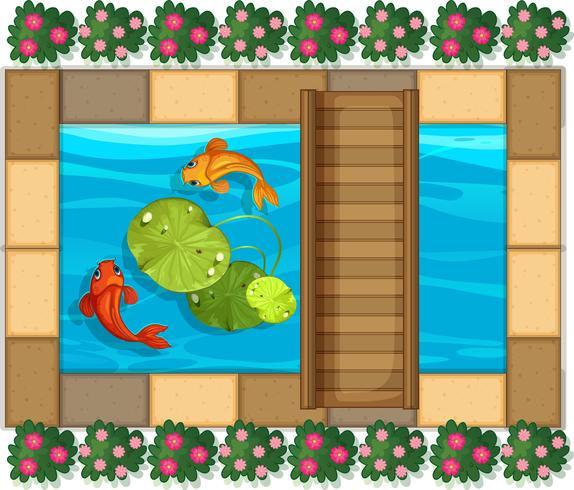 Scena dello stagno con pesci e waterlily