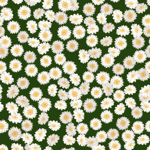 Daisies on green background pattern vector