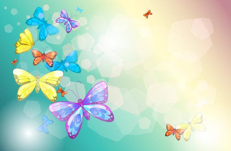 Bunte Schmetterlinge in einem Spezialpapier