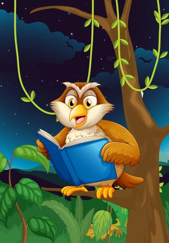 Uma coruja de leitura