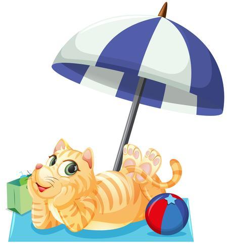 Un gato en vacaciones de verano. vector