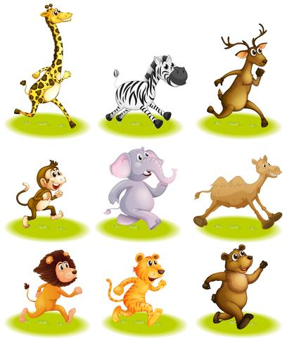 Running animals vector