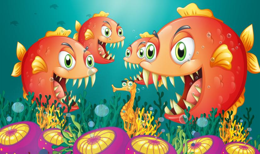 Een zeepaardje omringd door een groep hongerige piranha's