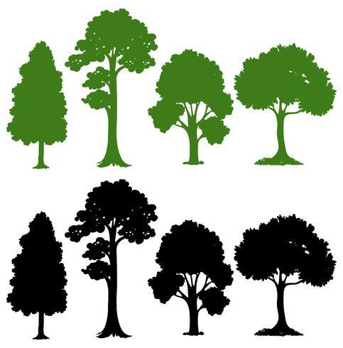 Set Schattenbildbaum vektor