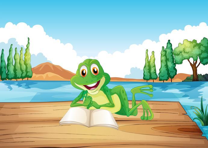 Una rana leyendo un libro en el trampolín de madera. vector