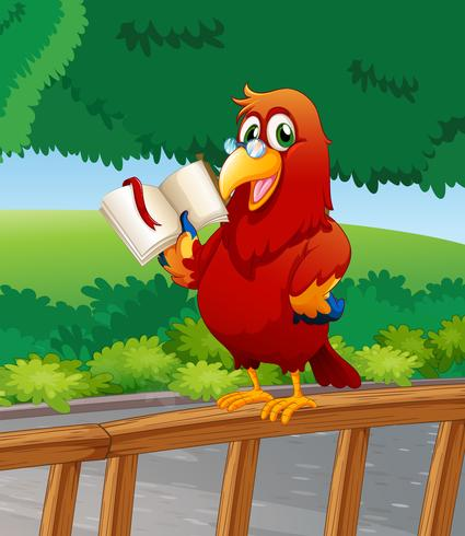 Un pappagallo che legge un libro sopra il recinto di legno