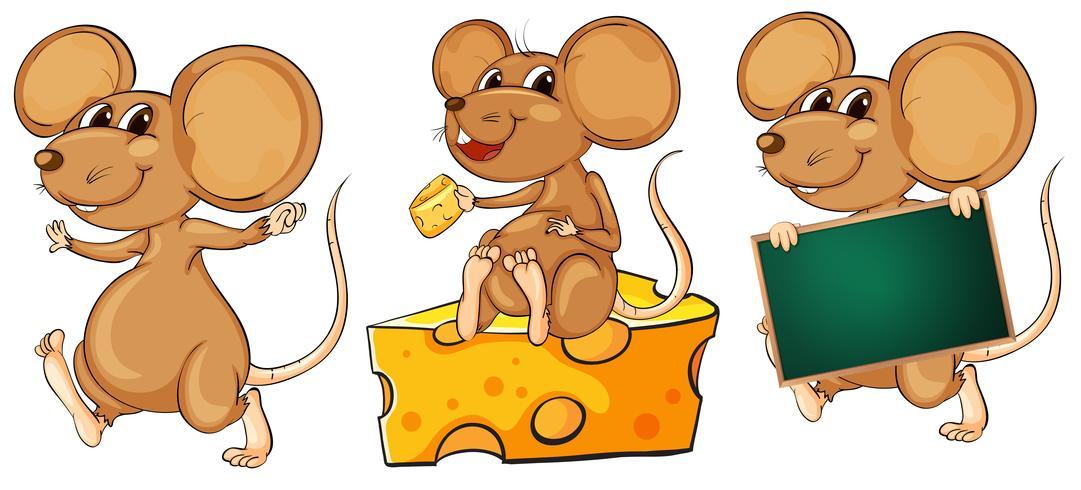 Trois souris ludiques vecteur