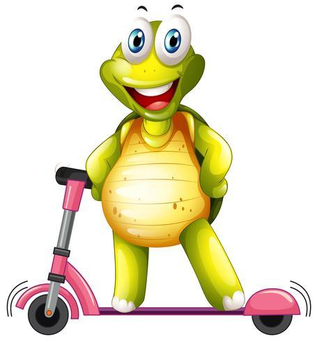 Una tortuga feliz en patinete scooter
