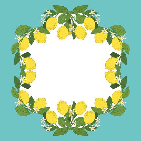 Modelo de cartão com texto. Quadro tropical dos frutos do limão do citrino no fundo do azul de turquesa do vintage.
