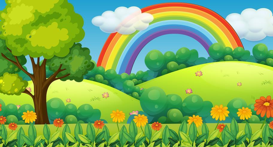 Hermosa montaña verde y arco iris