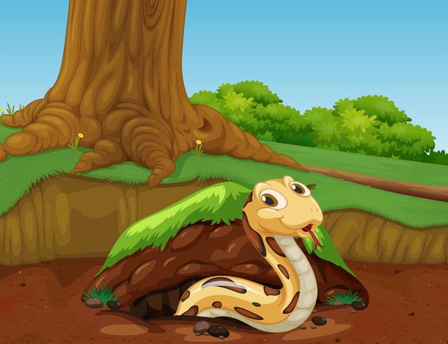 Um vetor de cobra na natureza