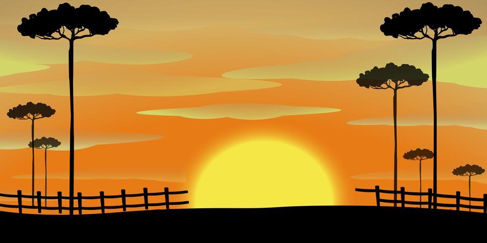 Scène de silhouette avec de grands arbres au coucher du soleil vecteur