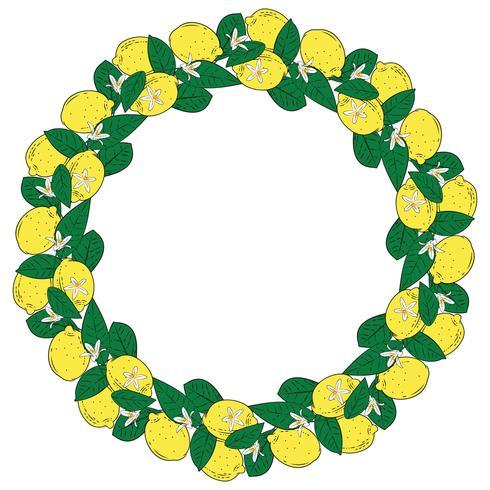 Frutti tropicali di agrumi limone con cornice rotonda di fiori. Estate sfondo colorato Illustrazione vettoriale
