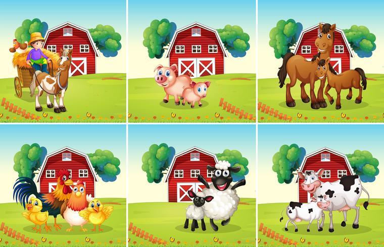 Sechs Szenen mit Tieren auf dem Bauernhof