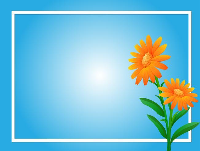 Modèle de bordure avec des fleurs orange vecteur