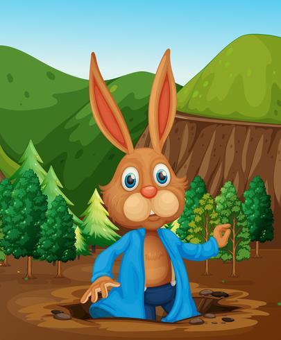 Un coniglio che vive un buco vettore