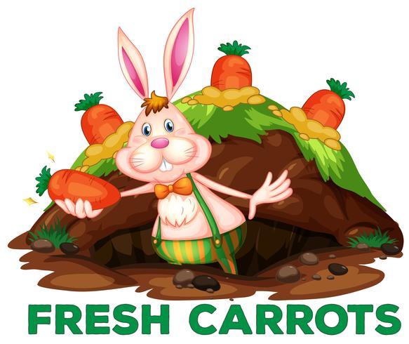 Un coniglio e carote carino vettore