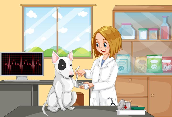 Medico veterinario Helping a Dog vettore