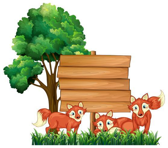 Sinais de madeira com três raposas