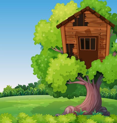 Altes Baumhaus auf dem Baum im Park