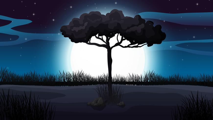 Scène forêt et clair de lune