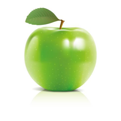 3D Apple vektor design illustration mall