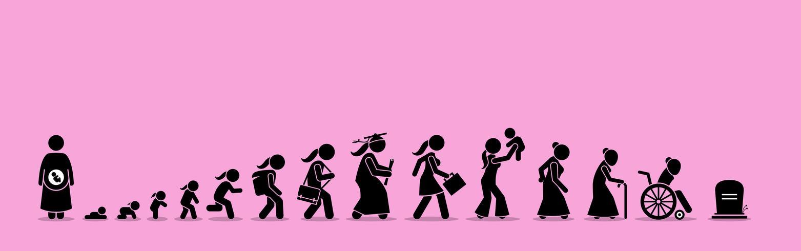 Ciclo di vita femminile e processo di invecchiamento.