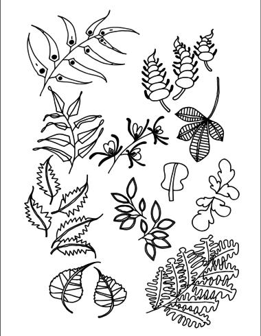 Conjunto de Doodle deixa vetor de desenho de mão