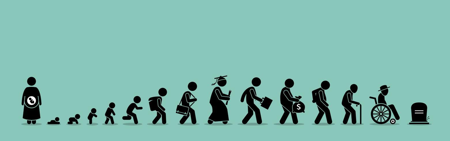 Ciclo de vida y proceso de envejecimiento. vector