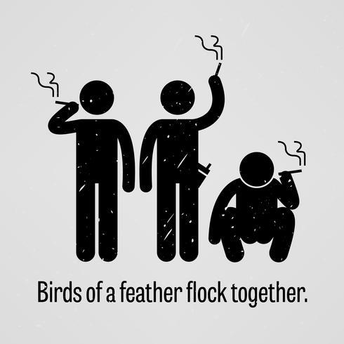 Oiseaux d'une plume volent ensemble. vecteur