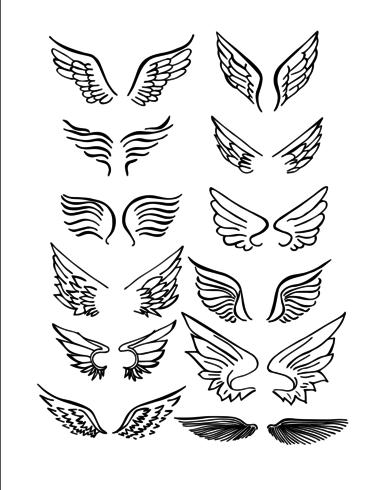 Conjunto de alas dibujado a mano vector