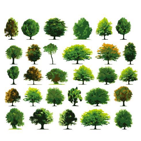 Träd Träuppsättning vektor design illustration mall