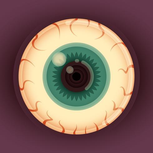 Illustrazione bulbo oculare