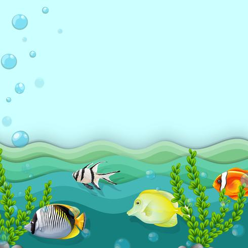 A sea with fishes vector