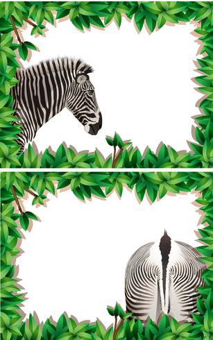 Un set di zebra sulla cornice della natura