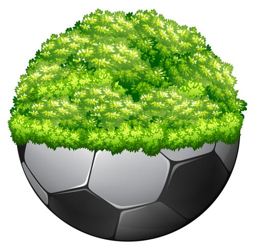 Football and green grass