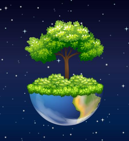 Green tree growing on earth