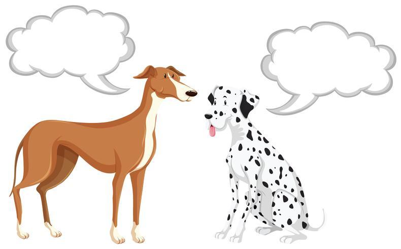 Dois, cachorros, com, fala, bolhas
