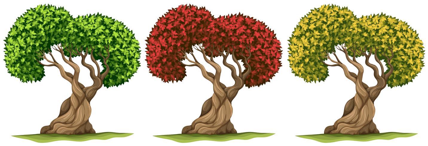 Árvores em três folhas de cores diferentes