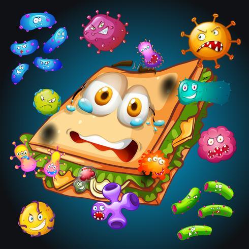 Bakterien auf altem Sandwich