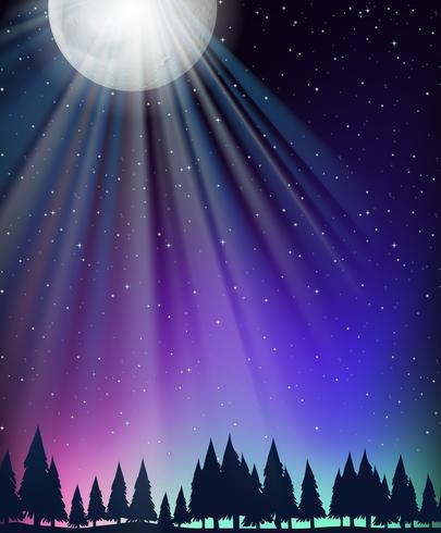 Escena de la naturaleza con la luna y las estrellas. vector
