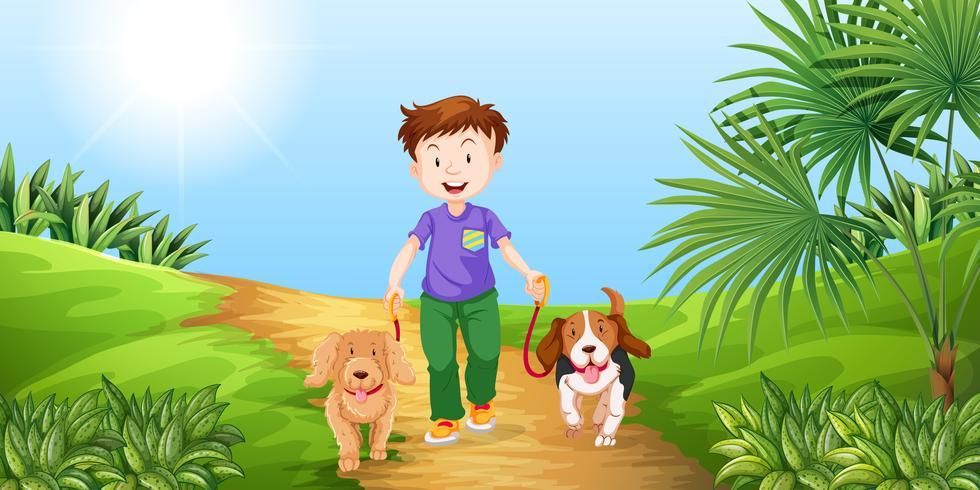 Pojke tar hundar för att gå i parken